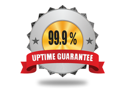 99.9% Server Uptime Guarantee